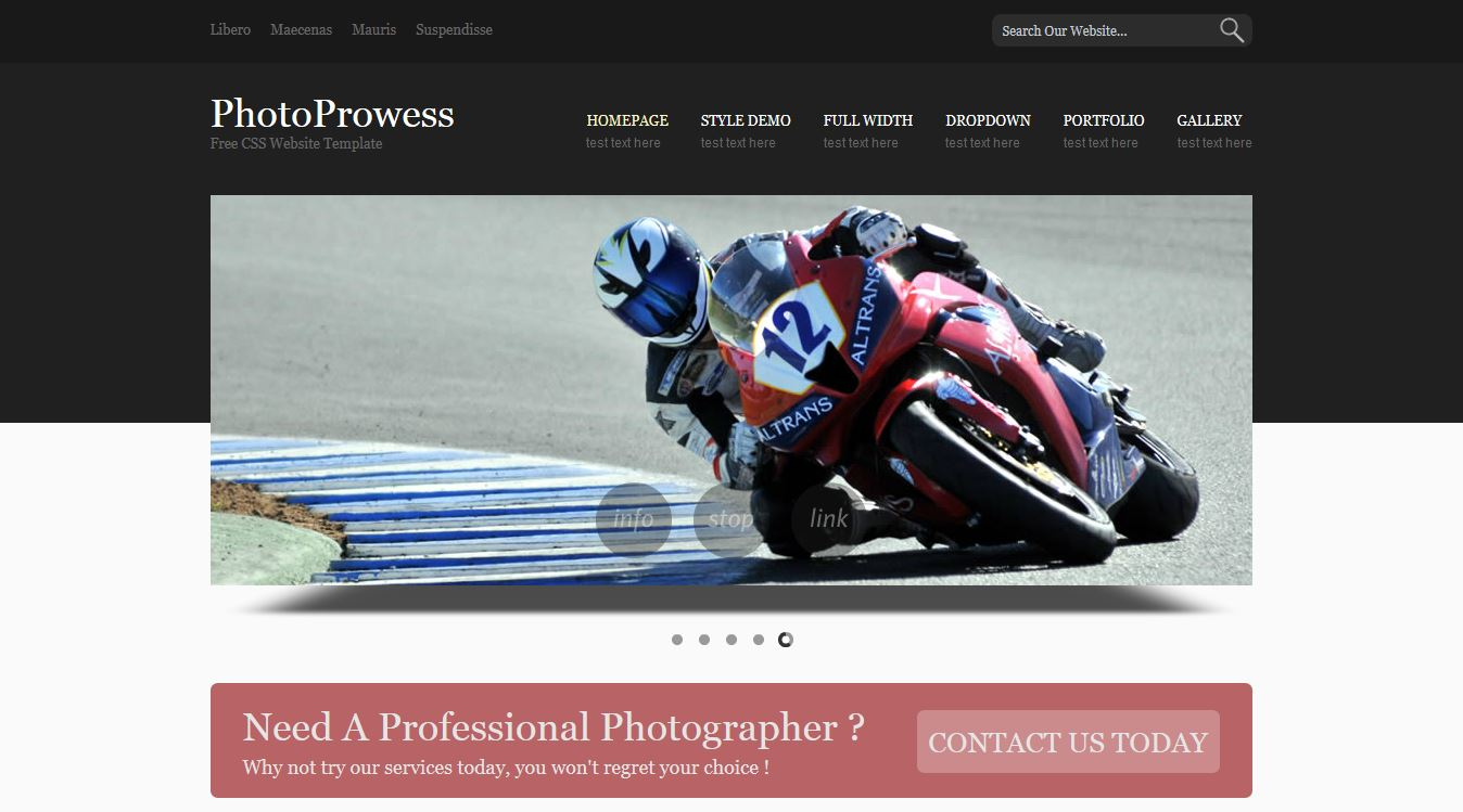 PhotoProwess Free CSS Template