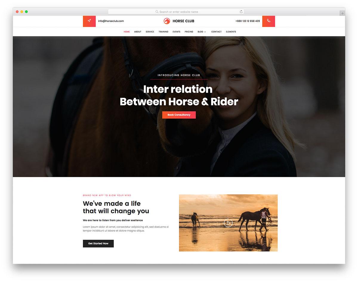 Horse Club free template