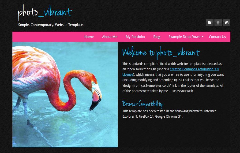 Photo Vibrant