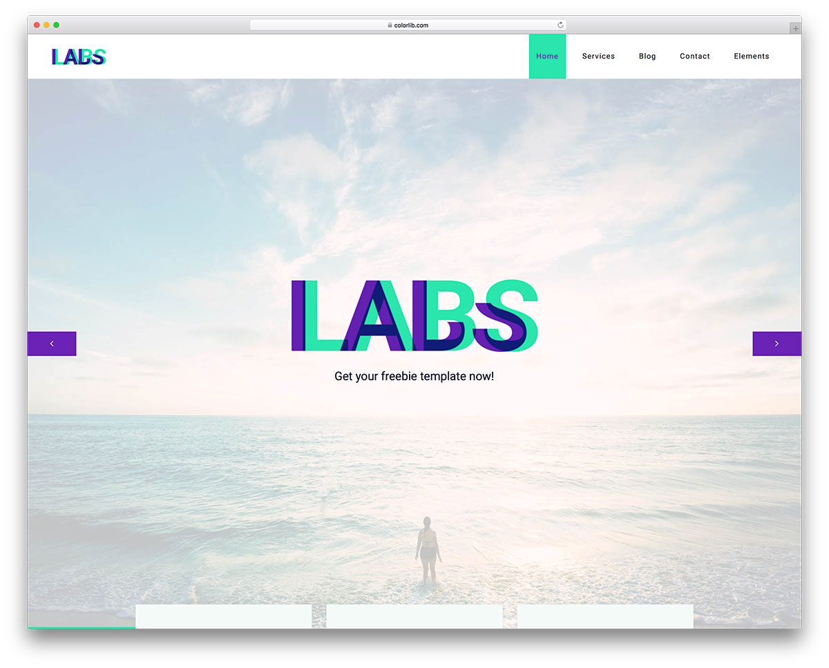 Labs templates